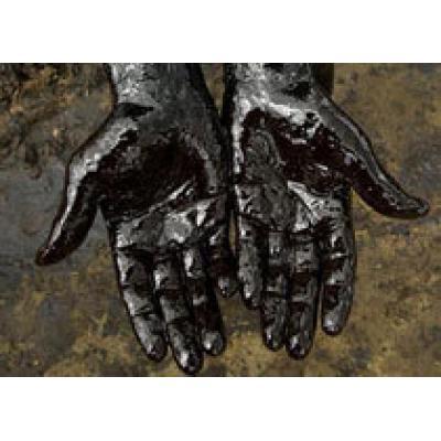 На иракское месторождение нефти претендуют ЛУКОЙЛ и Exxon Mobil
