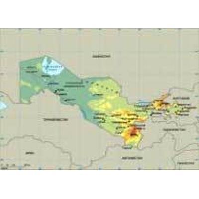 Узбекистан ищет инвестора для медно-молибденового месторождения