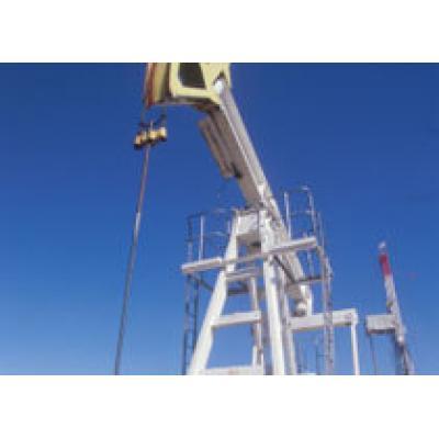 Тендер по иракскому месторождению Халфайя выиграл консорциум китайской CNPC - агентство