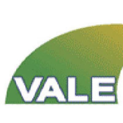 Vale увеличит производство в 2010 году