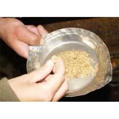 Добыча золота в Забайкалье в 2009 году составила 5,9 тонны