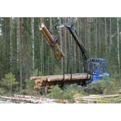В Казани обсудили проблемы лесопромышленного комплекса
