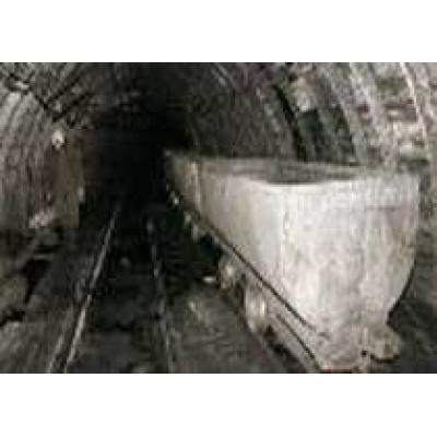 Индийская NMDC планирует купить 4 угольных шахты у Михаила Прохорова
