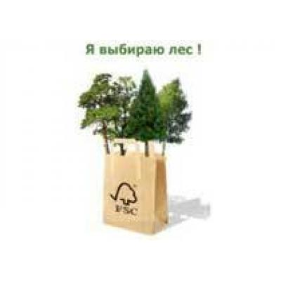 Экологические аспекты производства, потребления и утилизации продукции из древесины и бумаги: глобальные тренды и ситуация в России