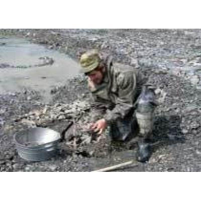 По распоряжению В.Путина, в Хабаровском крае будут добывать россыпную платину