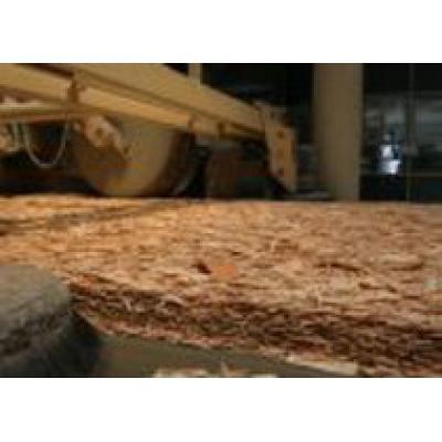 В Пермском крае началось строительство нового деревообрабатывающего завода