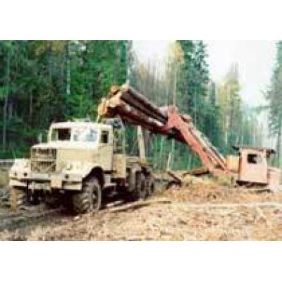 В Республике Коми запущена I очередь комплекса по глубокой переработке древесины