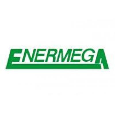 Литовская компания Alytaus Enermega примет участие в выставке «Лесдревмаш-2014»