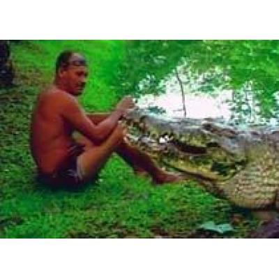 Ручной крокодил - достопримечательность Коста-Рики