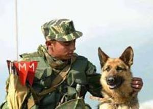Россия начала крупные военные учения на Кавказе