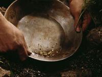 Туристы будут добывать золото на границе двух континентов