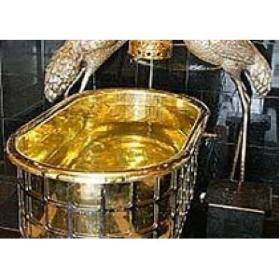 Ванну из золота похитители вынесли с 10 этажа японского отеля