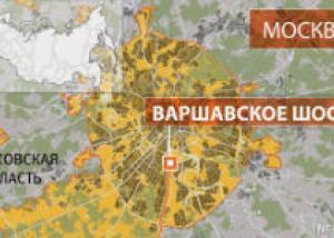 Найден свадебный кортеж, из которого стреляли в воздух в Москве