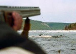 Госдума приняла закон, усиливающий санкции за нарушение правил охоты