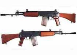 Индия начала испытание зимнего стрелкового оружия