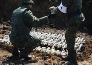 Обычные боеприпасы могут начать утилизировать на объекте `Марадыковский`