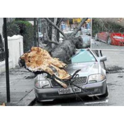 Ураган в Польше: есть жертвы
