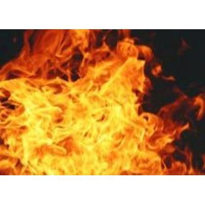Ситуация с пожарами в Греции улучшилась