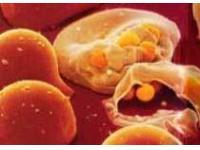 Вакцина против малярии успешно испытана на младенцах