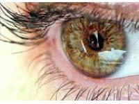 Недостаток каких витаминов ухудшает зрение?