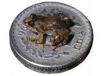 В Индии открыта микроскопическая лягушка