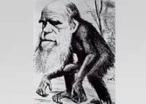 ремию Дарвина получил анальный алкоголик из США