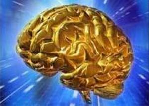 Американцы и азиаты по-разному используют свой мозг