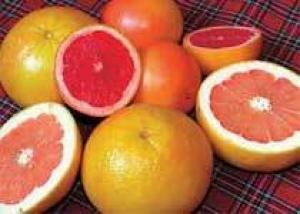 Грейпфрут замедляет распространение вируса гепатита С