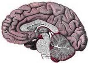 Найден предвестник злокачественной опухоли мозга