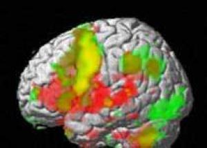 Мозг заранее готовится к потере концентрации