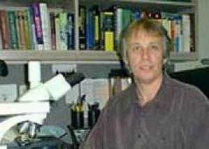 Учёный предложил 68 кирпичиков жизни