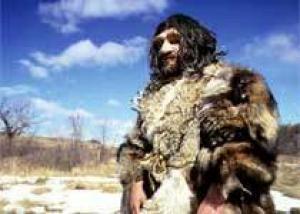 Неандертальцы и люди стали ещё ближе друг к другу