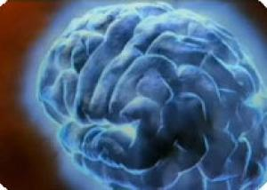 Ученые создали миниатюрный микроскоп для наблюдений за мозгом