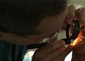 Северная Каролина: офтальмолог может лишиться лицензии за то, что обозвал пациентку жирной
