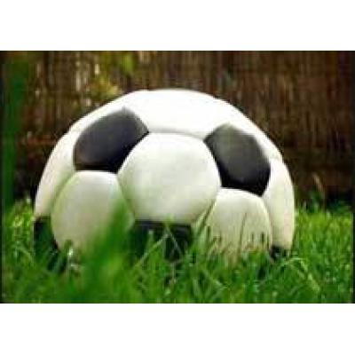 Туроператоры готовят `футбольные` предложения в Австрию