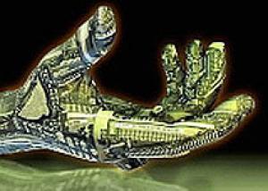 Предложен новый взгляд на эволюцию человеческой кисти