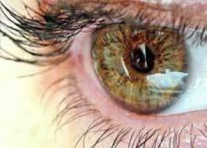 Слепоту при повреждении роговицы вылечат стволовые клетки