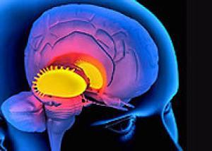 Социальный статус человека связан с плотностью дофаминовых рецепторов в мозге
