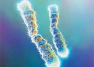 Обнаружены генетические мутации, отвечающие за преждевременное старение