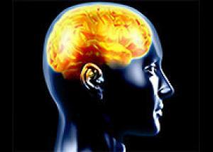 Мозг остро чувствует несправедливость
