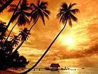 Гоа становится все более дорогим для туристов