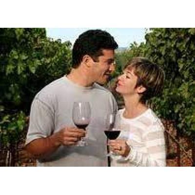 В Италии растет популярность винного туризма
