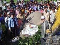 В Индии застрелен слон по кличке `Усама бен Ладен`, убивший 11 человек