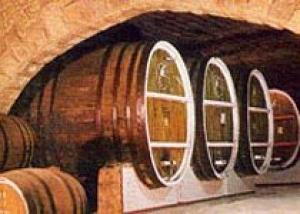 Организаторы аукциона по продаже участков в будущем `Городе вина` призывают виноделов к участию в торгах