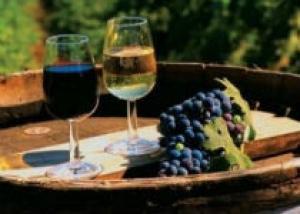 Древние виноделы консервировали вино смолой