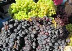 АВВУ: Урожай винограда удастся сохранить на уровне 2012 года