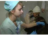 Ловцы бездомных животных в Москве будут носить спецодежду