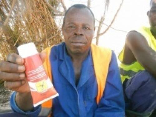 INSEKTLINE теперь и в Анголе