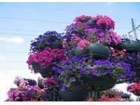Парк 50-летия Октября открыт в Москве