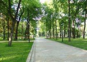 135 млн рублей направлено из бюджета Самары на озеленение города